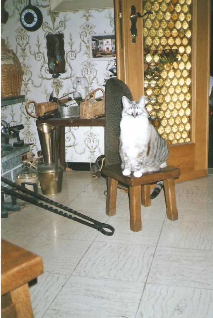 LAURA BILOUTE 2006.jpg